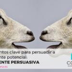Elementos clave para persuadir a tu cliente potencial: la fuente persuasiva